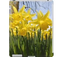 Daffodils 2 by Amber Feng Shui Art iPad Case/Skin