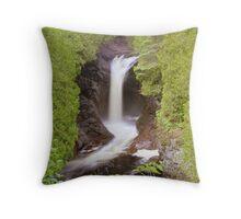 foliage frame Throw Pillow