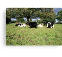 County Clare farm scene Canvas Print
