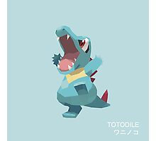 Totodile Low Poly Photographic Print