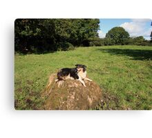 Happy Lassie Canvas Print