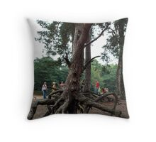 The roots of a tree Throw Pillow