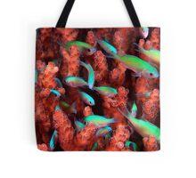 Blue/Green Community Tote Bag