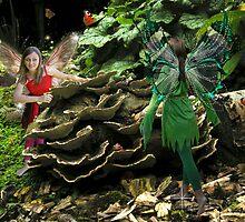 Fungi fairies by Harri