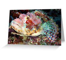 Smallscale Scorpionfish Greeting Card
