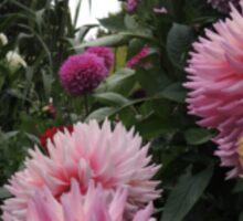 Perfume Of Pinks Sticker
