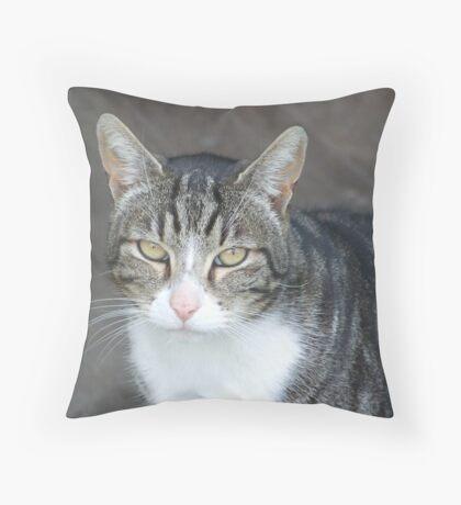 top cat Throw Pillow