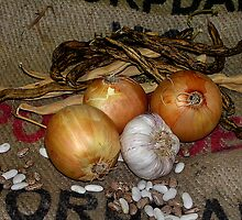 onions by Pam Bennun