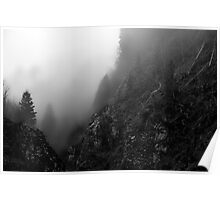A steep Valley in the Black Forest........ Poster