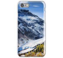 Bear Glacier iPhone Case/Skin
