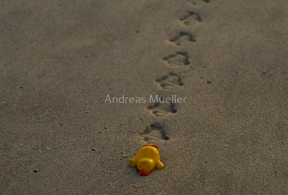 Coming Ashore by Andreas Mueller