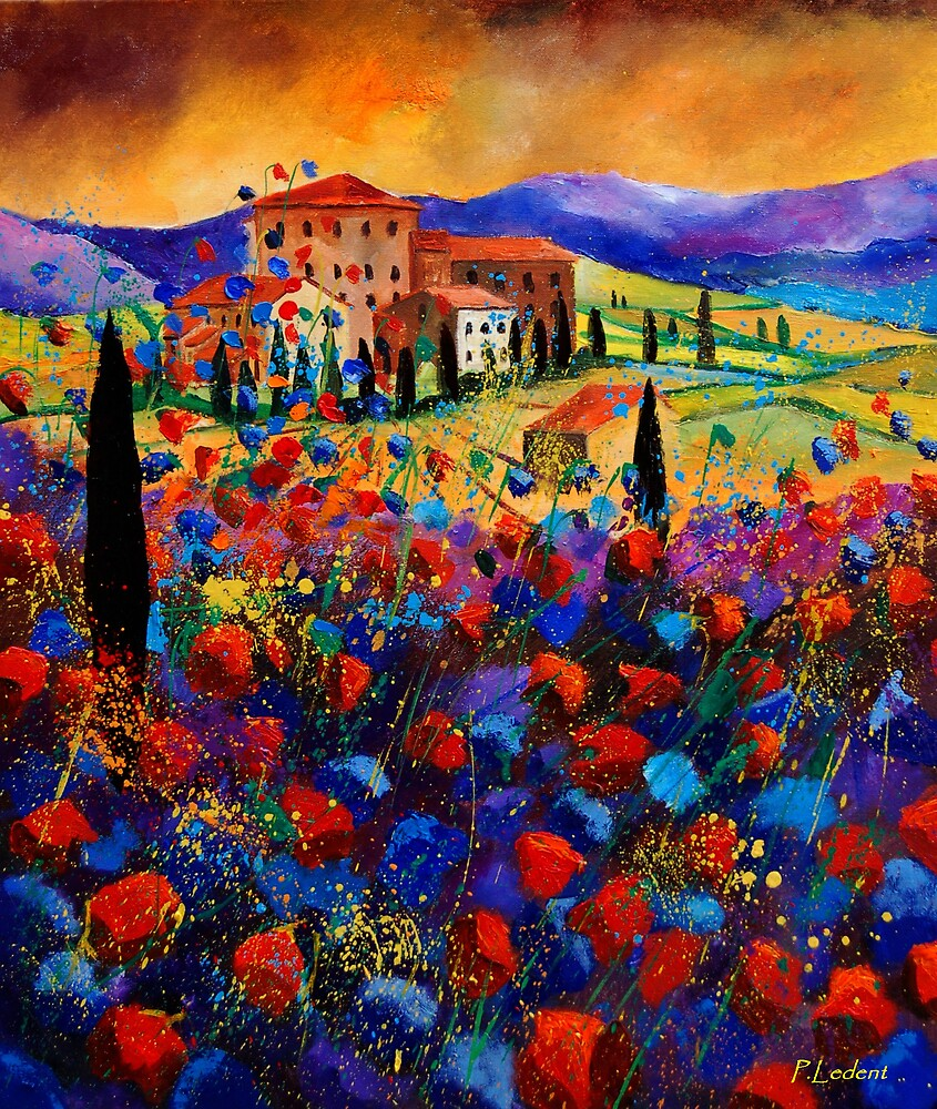 Tuscany poppies  by calimero