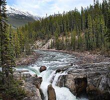 Canada's Sunwapta Falls by Dyle Warren