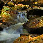Overflow by Jane Best