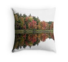 New Hampshire Foliage 2008 #1 Throw Pillow