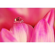 PINK Collection for the Cure - Her tears Photographic Print