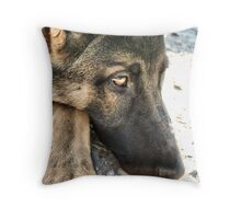 Bored German Shepard Throw Pillow