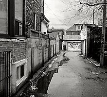 Wet Laneway by Gary Chapple