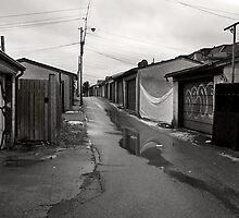 Back Lane In Little Italy by Gary Chapple