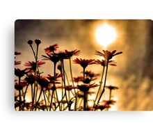 Silhouetted Flowers Canvas Print