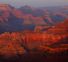Grand Canyon At Sunset by Stephen Vecchiotti