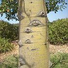 Even the Trees Have Eyes... by Kaika