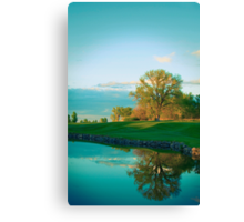 Strong Reflection Canvas Print