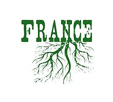 France Roots by surgedesigns