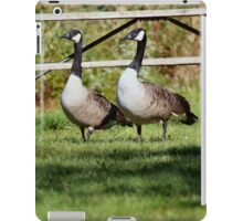 What does  she want...I really don't want to go into the lake... iPad Case/Skin