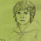 Frodo Baggins by Gemma Amendola