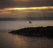 SunSet by WillBov