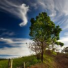 A Pleasant Day by Steven  Siow