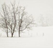 Open Snow Fields by Debbra Obertanec