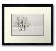 Open Snow Fields Framed Print