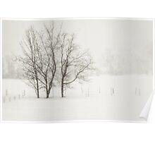 Open Snow Fields Poster