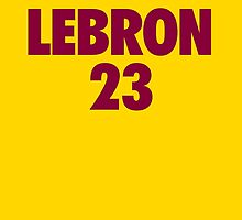 LeBron James #23 by owned