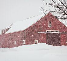 Winter Red Barn by Debbra Obertanec