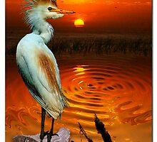 Golden ~ (Egret) by Skye Ryan-Evans
