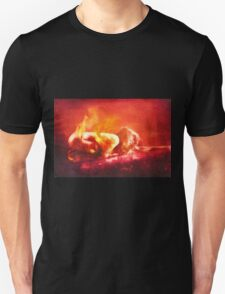 Born From Fire Unisex T-Shirt