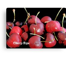 Cherry Ripe Canvas Print