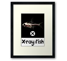 X is for X-ray fish Framed Print