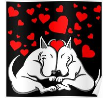 Bull Terriers In Love Poster