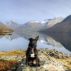 The Wastwater Patterdale by Jamie  Green