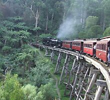 The Good Old Days, Puffing Billy, Melbourne by Katherine Wiles