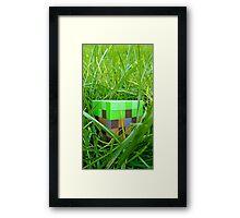 Minecraft-dirt Framed Print