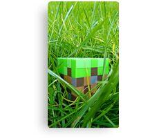 Minecraft-dirt Canvas Print