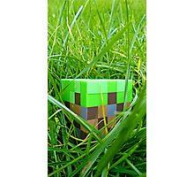 Minecraft-dirt Photographic Print