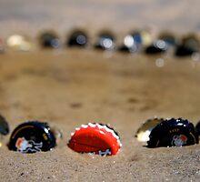 close range bottlecaps by jacquelinegugli