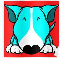 Aqua and White Bull Terrier Poster