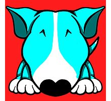 Aqua and White Bull Terrier Photographic Print